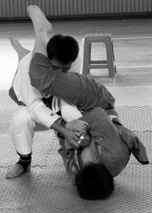 643px-In-guard_armbar