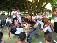 Brasiliansk kampsport