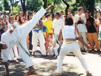 Olika typer av brasiliansk kampsport